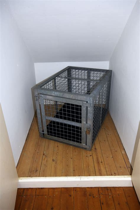 My cage - in its cell   My steel cage has been moved