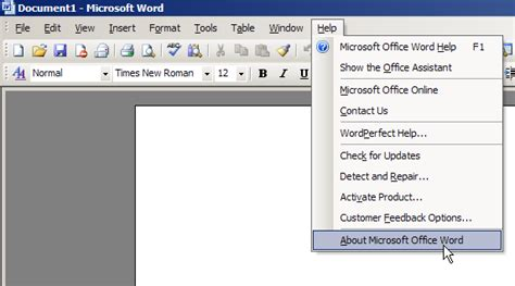 What version of Word do I have? | ShaunaKelly